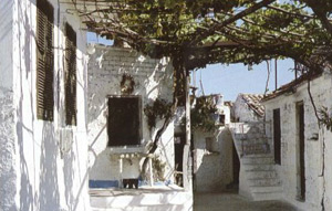 White washed houses in Agios Leon